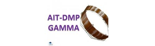 AIT-DMPG