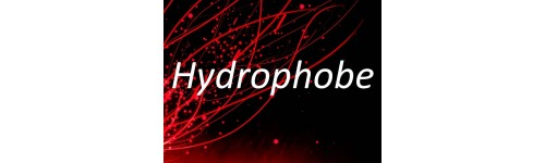 Intéraction hydrophobe